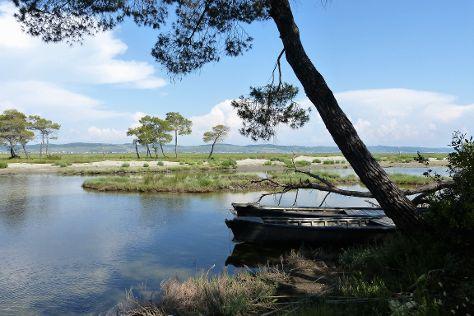 Laguna e Karavastase, Divjake, Albania