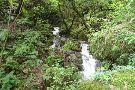 Reserva del Huaico
