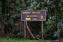 Sendero Macuco, Puerto Iguazu, Argentina
