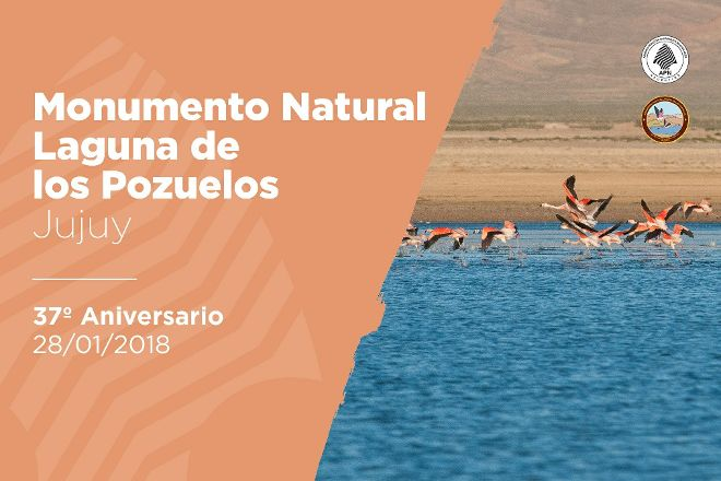 Monumento Natural Laguna de los Pozuelos, Abra Pampa, Argentina