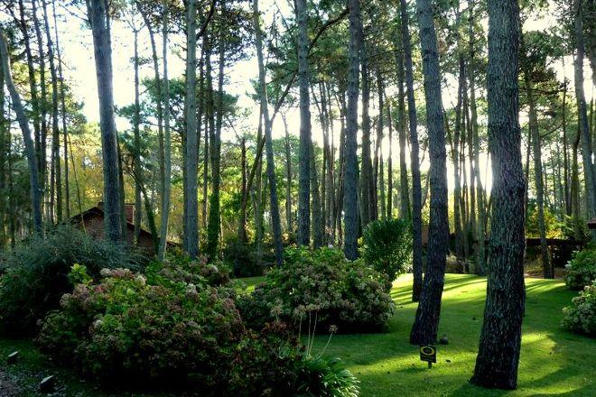 Reserva Natural, Carilo, Argentina