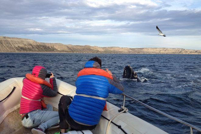 Rustica Patagonia Turismo, Puerto Madryn, Argentina