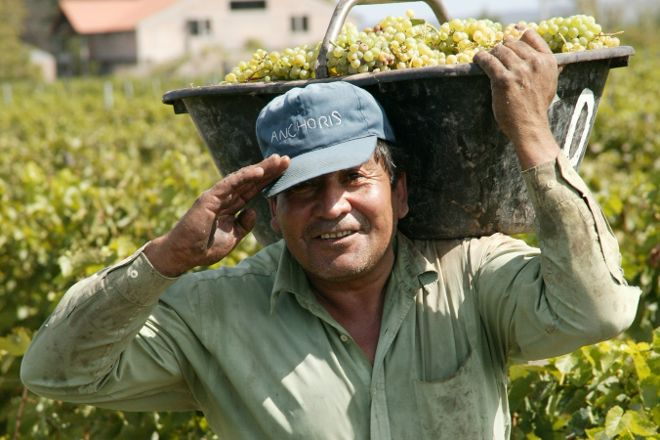 Vintura Wine Tours, Agrelo, Argentina