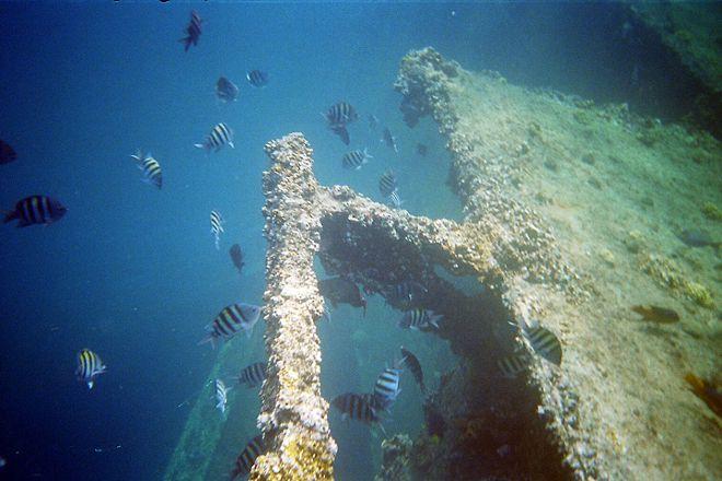 Antilla Shipwreck, Palm - Eagle Beach, Aruba