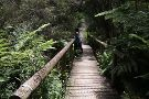 Edward Hunter Bush Reserve