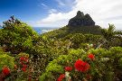 Lord Howe Island - Sea to Summit Expeditions
