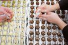 Mornington Peninsula Chocolaterie & Ice Creamery