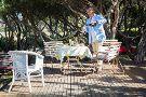 Mornington Peninsula Plunge Wine Tours