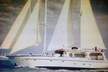 Ahoy Buccaneers - Day Cruise