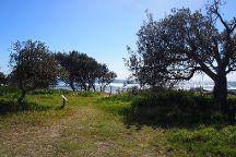 Angourie Walking Track, Yamba, Australia