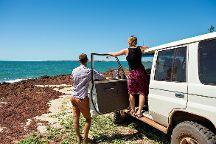 Arnhemlander 4WD Cultural Tour, Jabiru (Kakadu National Park), Australia