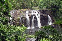 Atherton Tablelands, Cairns, Australia