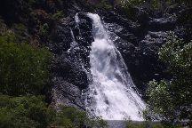 Bloomfield Waterfall, Bloomfield, Australia