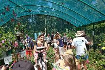 Bribie Island Butterfly House, Bongaree, Australia