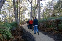 Bridport Walking Track, Bridport, Australia