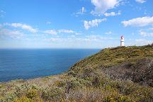 Cape Schanck Boardwalk, Flinders, Australia