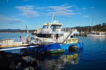 Cat Balou Cruises, Eden, Australia