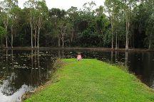 Centenary Lakes - Cairns Botanic Gardens, Edge Hill, Australia