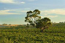 Clare Valley, South Australia, Australia