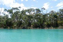 Coogoorah Park Nature Reserve, Anglesea, Australia