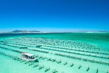 Experience Coffin Bay