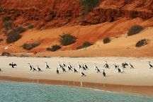 Francois Peron National Park, Denham, Australia