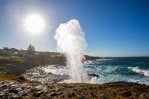 Kiama Blowhole, Kiama, Australia