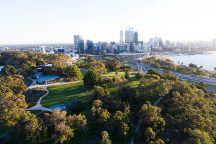 Kings Park and Botanic Garden
