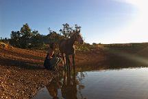Leconfield, Kootingal, Australia