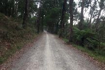Lilydale to Warburton Rail Trail, Lilydale, Australia