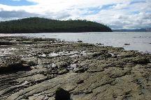 Lime Bay State Reserve, Port Arthur, Australia