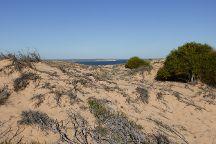 Little Lagoon, Denham, Australia