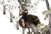Live Wire Park, Lorne, Australia