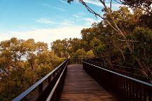Lotterywest Federation Walkway, Perth, Australia