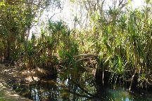 Low Level Nature Reserve, Katherine, Australia
