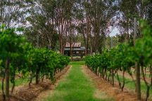 Moorebank Private Vineyard Estate, Pokolbin, Australia