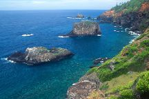 Norfolk Island National Park & Botanic Garden, Norfolk Island, Australia