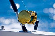 Offshore Reef & Game Fishing Mooloolaba