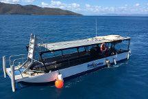 Reefstar Cruises