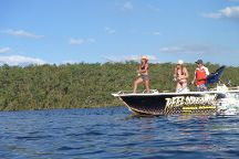 Reel Screamin Barra Fishing