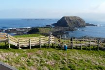 Seal Rock, Phillip Island, Australia