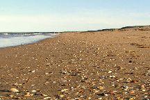 Seven Mile Beach National Park, Shoalhaven, Australia