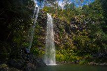 Springbrook National Park, Springbrook, Australia