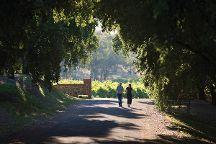 St Hugo Wines, Rowland Flat, Australia