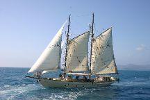 Tallship Adventures