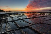 Tessellated Pavement, Eaglehawk Neck, Australia