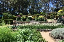 Blue Mountains Botanic Garden, Mount Tomah, Australia