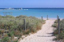 The Coral Bay Shark Nursery, Coral Bay, Australia