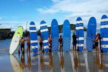 Waves to Wilderness Experiences, Coffs Harbour, Australia