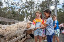 White Ridge Farm, Elimbah, Australia